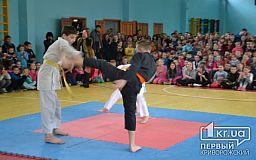 В Кривом Роге состоялись показательные выступления по карате-до и джиу-джитсу