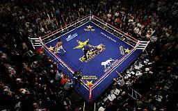 Украинские боксеры триумфально нокаутировали своих соперников