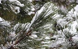 19 квітня у Кривому Розі сніжитиме. Прогноз погоди