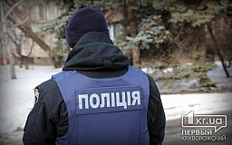 Криворожское хулиганье попалось в руки полиции