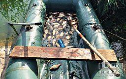 Двое в лодке, не считая рыбы: в Кривом Роге задержали браконьеров