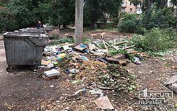 За минувшие сутки в Кривом Роге горели балкон и мусор
