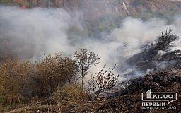 В Кривом Роге горели 2 гектара сухостоя