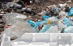 На Солнечном в Кривом Роге горел мусор