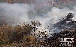 Сентябрь дает жару: в Кривом Роге объявлена чрезвычайная пожарная опасность