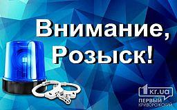Киевлянин, разыскиваемый за кражу и незаконное хранение оружия, может находиться в Кривом Роге