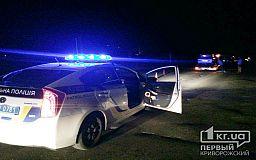 Форсаж в Кривом Роге: копы задержали лихача, выскакивающего из автомобиля на ходу