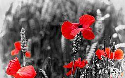 Кривой Рог сегодня чтит память погибших во Второй мировой войне