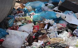 Как утилизируют бытовые отходы в Европе и в какой стране работает полиция мусора