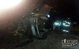 В Кривом Роге Skoda врезалась в дерево. Водитель в больнице (ОБНОВЛЕНО)
