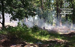 Из-за мусора в криворожской лесополосе загорелись деревья
