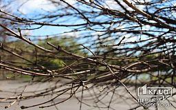 Погода у Кривому Розі на 26 травня