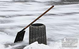 Поможем пожилым людям расчистить дворы от снега, - заммэра Кривого Рога объявил флешмоб