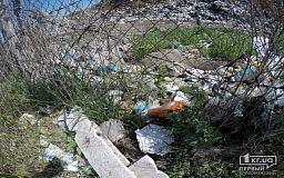 Есть люди, которым тяжело донести мусор до баков, - криворожанка