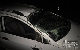 В Кривом Роге неопытный водитель попал в ДТП