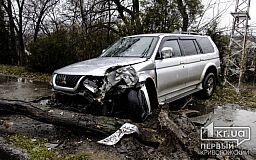 В Кривом Роге легковушка влетела в дерево