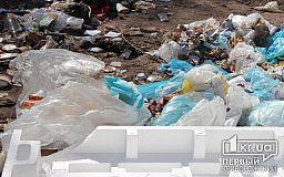 В Кривом Роге горел самосвал с мусором