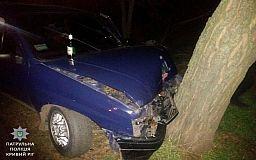 Влетівши на авто в дерево, сп'янілий криворіжець продовжив пити пиво на очах у копів