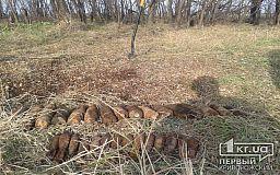 Под Кривым Рогом уничтожили артиллерийские снаряды