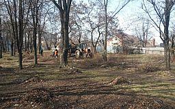 Благоустройство Кривого Рога после зимы должно быть полностью завершено до конца апреля, - городские власти