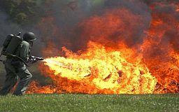 Криворожские сотрудники ГС ЧС рассказали как уберечь лес от огня