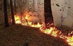 Объявлен максимальный уровень пожарной опасности: Чего не следует делать и за что можно получить штраф