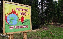 Из-за жары запрещен въезд в леса Днепропетровской области