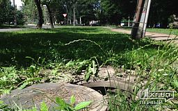 Открытые канализационные люки в парке. Что делать, куда сообщать?