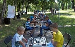 Ход конем: В нескольких районах Кривого Рога провели шахматные турниры