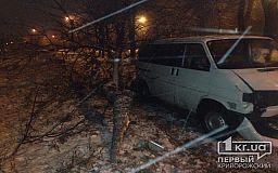 В Кривом Роге Volkswagen врезался в дерево