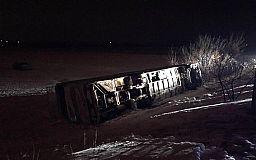 На криворожской трассе автобус с детьми насмерть сбил женщину и слетел в кювет