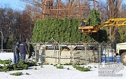 В Кривом Роге устанавливают главную городскую новогоднюю елку
