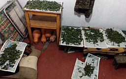 Криворожанину грозит 12 лет тюрьмы за хранение наркотиков