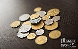 «Мандри криворізького бюджету» - нова програма криворіжця