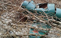 Обрезали деревья - разрушили детскую площадку. Благоустройство по-криворожски