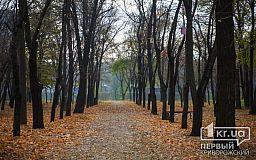 Погода в Кривом Роге на 26 октября