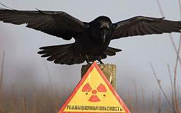 Знаете ли вы, что радиация...