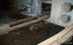 В Саксаганском районе подвал затопило канализационными нечистотами