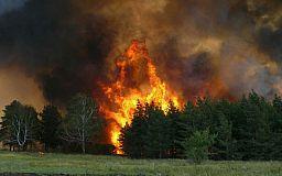 Осторожнее с огнем: В городе установлен максимальный уровень пожарной опасности