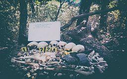 Ничего святого: в Кривом Роге «черные копатели» осквернили останки солдат