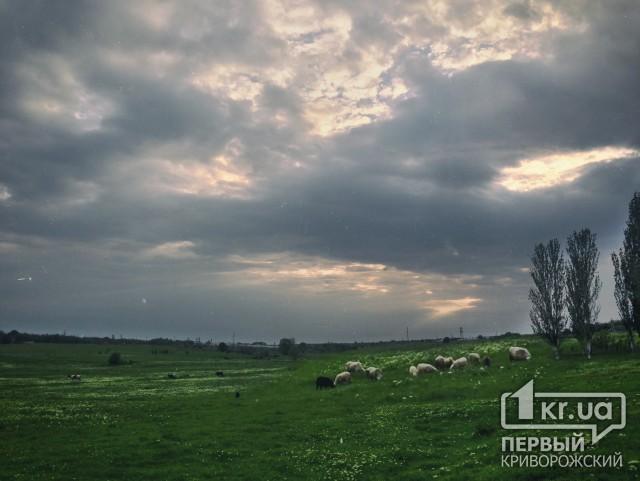 Погода в беларуси на весь месяц