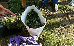 В Кривому Розі полісмени вилучили «травички» на 80 тисяч гривень