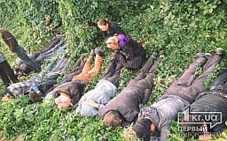 Табор в небо не уходит: в Кривом Роге 14 ромов задержаны за кражу