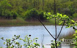 Погода в Кривом Роге на 12 мая