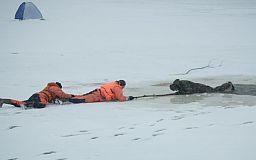 Что делать, если вы провалились под лед или как помочь другому выбраться из ледяной ловушки