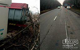 В Кривом Роге грузовик слетел в кювет