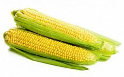 Украина будет отдавать долг Китаю кукурузой