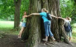 Благодаря девятикласснице криворожский дуб включен в список вековых деревьев Украины