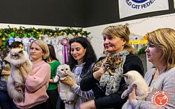 Афиша мероприятий: Международная выставка кошек и симфо-шоу ждут криворожан в субботу
