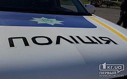 Криворожанин, который ругался матом на полицейских и нарушал общественный порядок, заплатит штраф